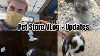 Pet Store Vlog + New Pet Updates!