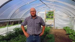 Small Farm Marketing Success with Daniel Garcia of Garcia's Gardens