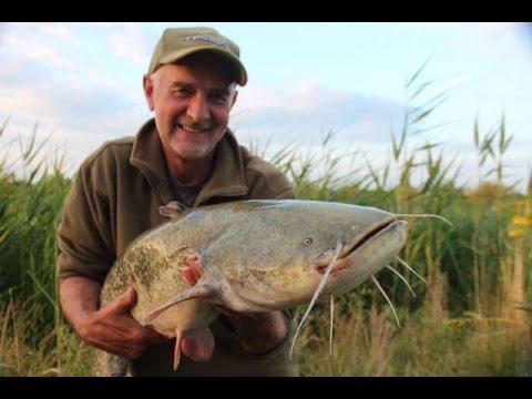 Mick Brown fisker efter maller