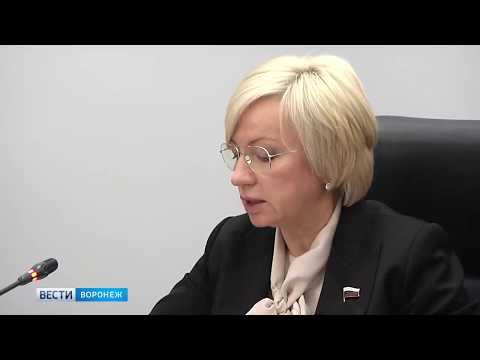 В Воронежской областной Думе обсудили вопросы социальной поддержки многодетных семей