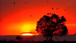 DJ Merlon Feat. Black Motion & Mondli Ngcobo - Tale Of The Monkeys