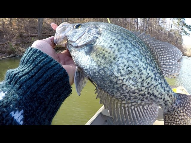 Crappie Fishing Cold Front Conditions During Spawn