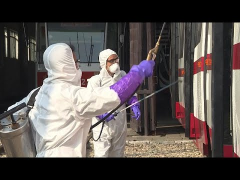 Áttekintés a paraziták elleni kezelésről