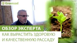 Смотреть онлайн Советы садоводам: здоровая и качественная рассада своими руками