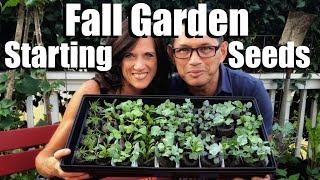 Fall Garden - Starting Seeds with CaliKim & CameraGuy // Fall Garden Series #1
