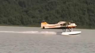 Flightseeing and Bear Viewing on Wolverine Creek with High Adventure Air out of Soldatna, AK