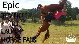 Try Not To Laugh - Horse Fails