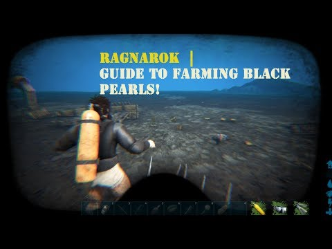 Valguero Where To Find Black Pearls The Secret Oil Cave Ultimate Resource Guide Ark Valguero Ark black pearl locations ragnarok in todays video i show you my go to location to farm black pearls in ark on the ragnarok map. valguero where to find black pearls the secret oil cave ultimate resource guide ark valguero