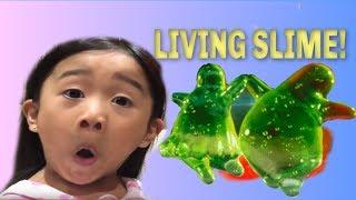 LIVING SLIME! W/ KAYCEE & RACHEL