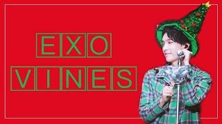EXO vines to enjoy during the holidays 🎄