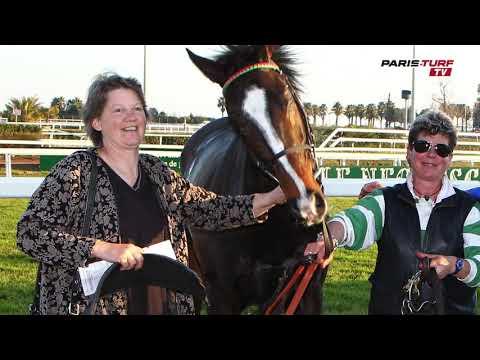 Quinté mardi 26/03 : «Dubai Empire (n°14) est un cheval très intéressant»