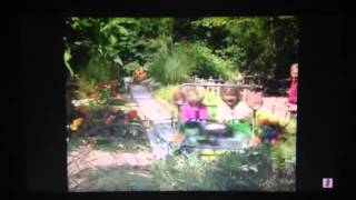 Barney Let's go to the zoo song 5:Jungle Adventure