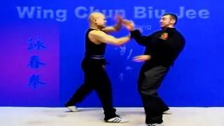 Wing Chun Kung Fu - Wing Chun Biu Jee Form Applications Fight Preview