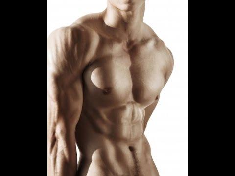 Petrova le bodybuilding