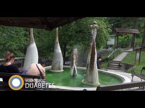 Dijabetes salata Dr.