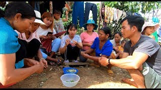 Chị K'Thi hái trái cà làm cơm - Hương vị đồng quê - Bến Tre - Miền Tây