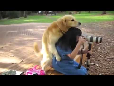 Dog And Women SEX