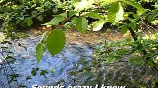 Karaoké - Chris Rea : Gone Fishing
