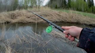 Весенняя ловля плотвы на малой реке