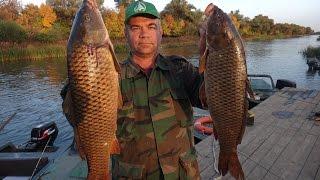 Где в россии самая лучшая рыбалка