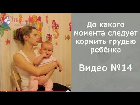 До какого момента следует кормить грудью ребёнка