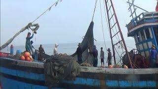Quảng Bình phát hiện, xử lý 4 tàu khai thác hải sản sai quy định