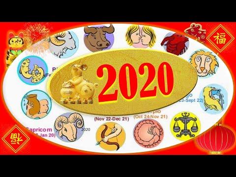 Ano ang Kapalaran ko sa 2020? Horoscope Swerte, Malas, Hula Zodiac, Pagibig, Pera Negosyo Prediksyon