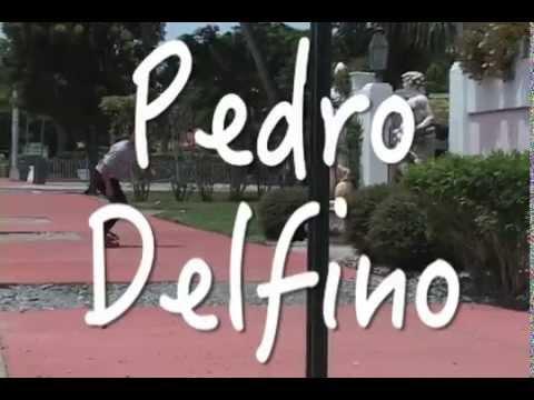 Pedro Delfino - Collage