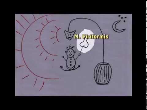 Kinder-Hypertonie-Behandlung