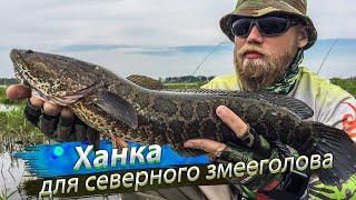 Рыбалка на озере ханке