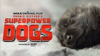 Superpower Dogs (2019) Video