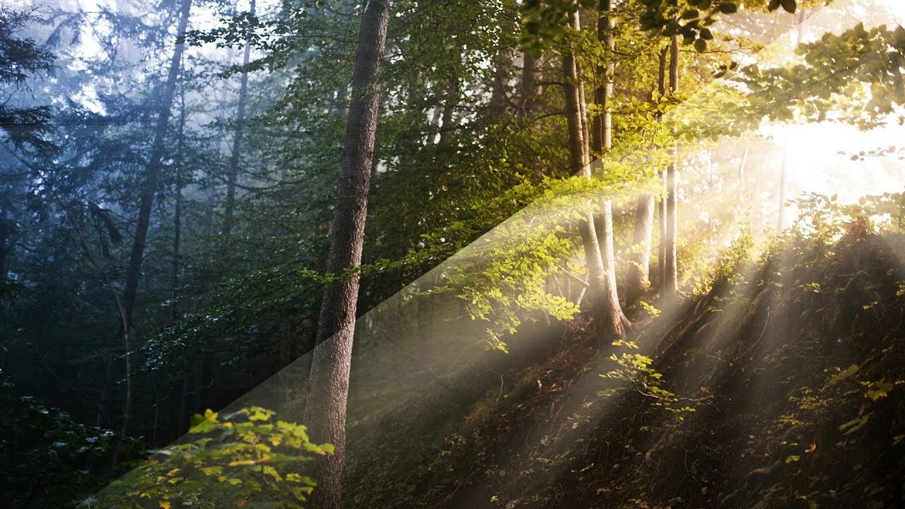 Realistische Sonnenstrahlen erstellen – Luminar-Tutorial