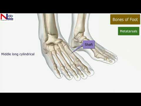 Deformare artroză în articulații mari