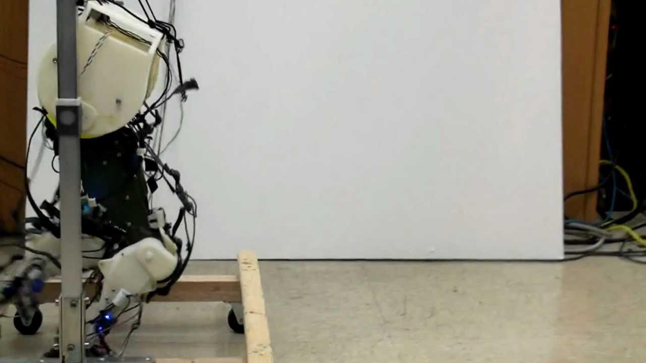 This Robot Walks Exactly Like A Human