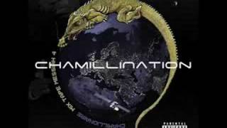 Foolish Freestyle - Chamillionaire