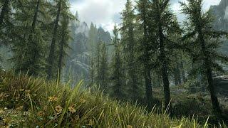 The Elder Scrolls V: Skyrim Special Edition Прохождение На Русском — НОВЫЕ ОЩУЩЕНИЯ