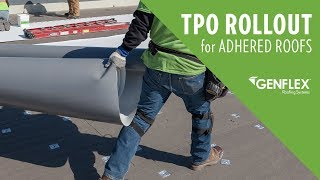 TPO Roll Out for Adhered Roofs