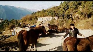 preview picture of video 'Northern Bhutan | Gasa | Timelapse | Roadtrip'