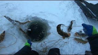 Отчеты о рыбалке в быловодском