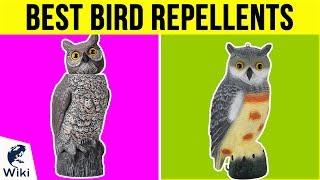 10 Best Bird Repellents 2019