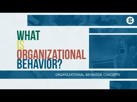 What is Organizational Behavior?
