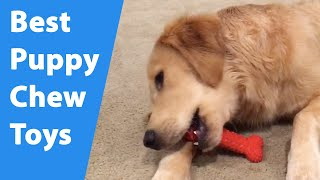 Puppy Chew Toys: The Best Chew Toys For Teething Puppies