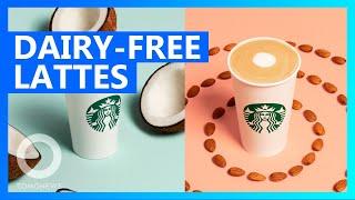 Starbucks Adds Dairy-free Drinks, Tests Oat Milk - TomoNews