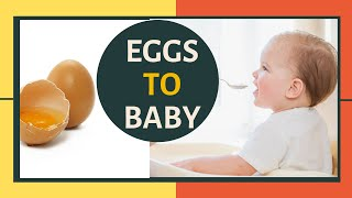 When to start feeding baby eggs