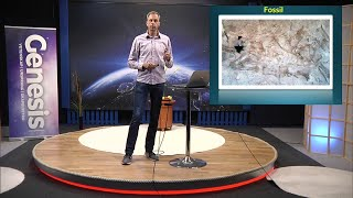 Thumbnail for video: Evolutionsargumenten: Fossilen - Biblisk kreationism avsnitt 12 - Göran Schmidt