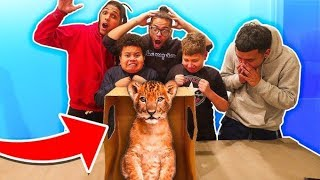 WHAT'S IN THE BOX CHALLENGE!! **LIVE ANIMALS**