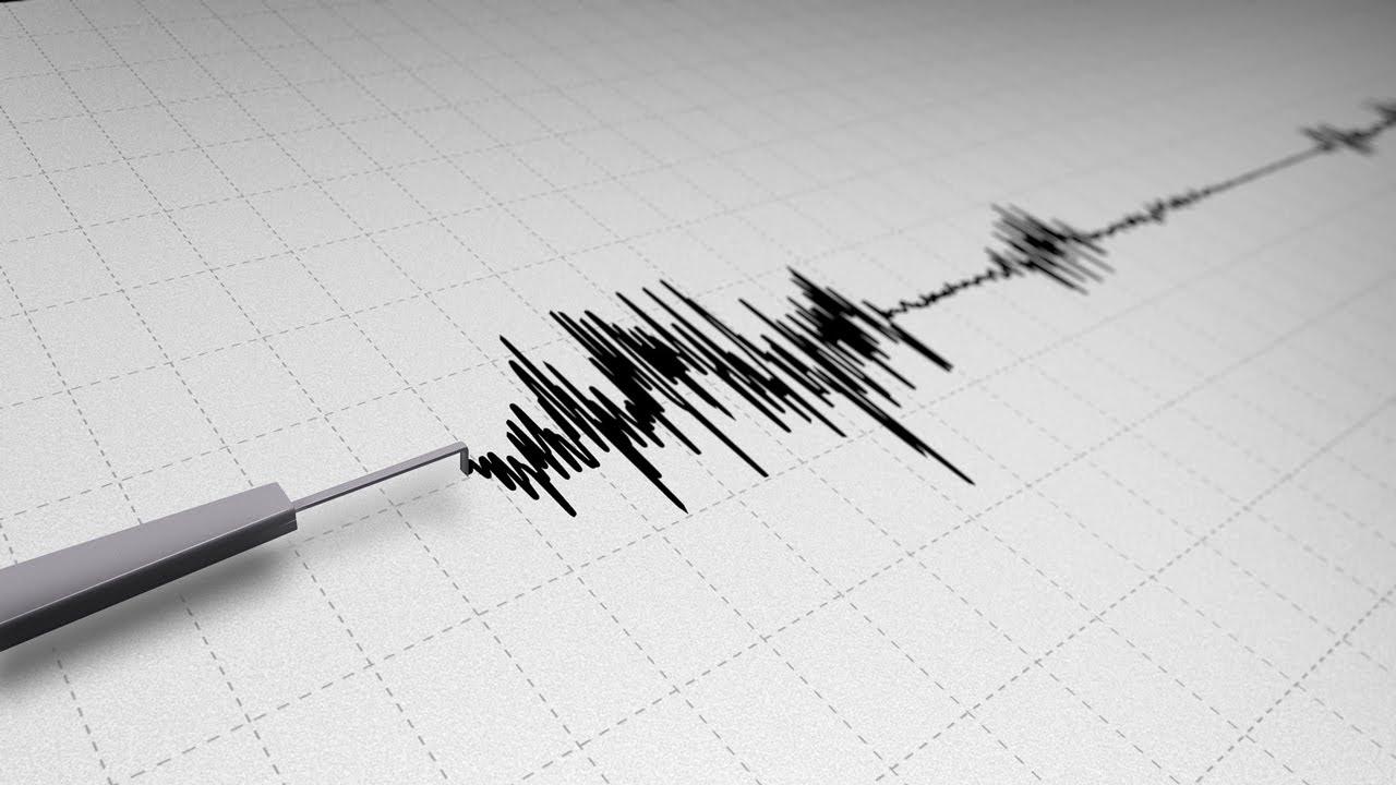 Earthquake Seismograph Line Looping - 2 Styles | Bildquelle: https://www.youtube.com/watch?v=MoOTr70ZYXw © YouTube | Bilder sind in der Regel urheberrechtlich geschützt