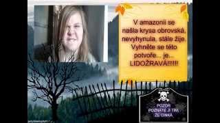 kronika -  KRYSA ..... lea a elis