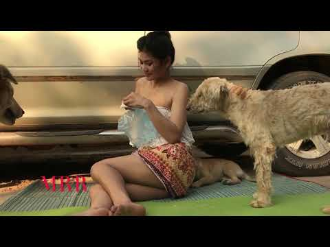 Wow, Amazing Dogs Breeding In My Village   Dogs play with pretty girl part 4