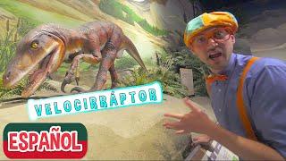 Blippi Español Visita el Pacific Science Center | Aprende sobre dinosaurios | Museo para Niños